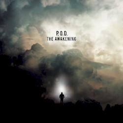 P.O.D. - Am I Awake (edit)