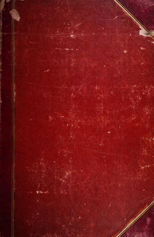 Oiseaux brillans du Brésil by